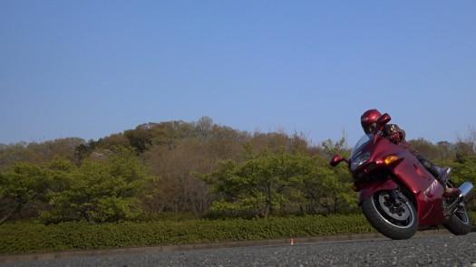 MAH00257 (5).JPG